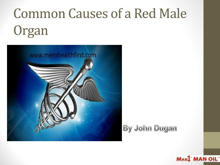 common causes of a red male organ n.