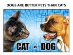dogs are better pets than cats