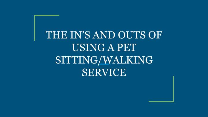 the in s and outs of using a pet sitting walking service n.