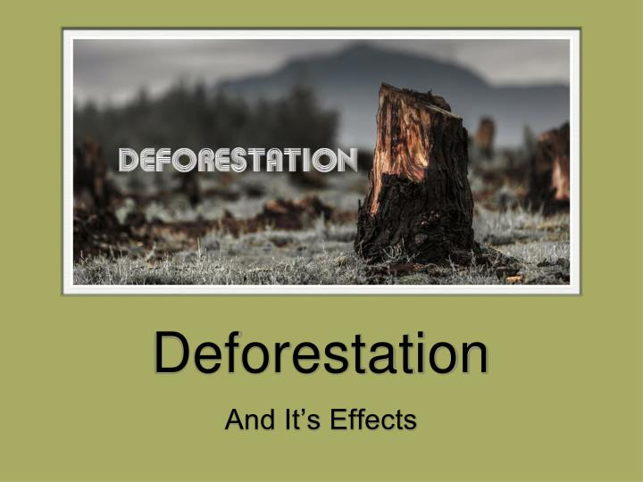 deforestation n.