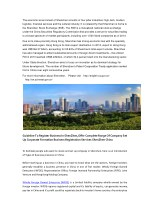 the economic environment of shenzhen consists