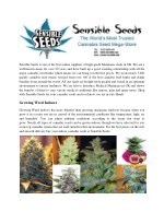 sensible seeds is one of the best online