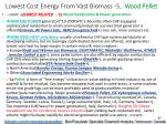 lowest cost energy from vast biomass 5 wood pellet