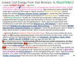 lowest cost energy from vast biomass 6 wood pellet 2