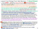 lowest cost energy from vast biomass 7 wood ethanol