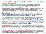 lowest cost energy from vast biomass 9 black liquor