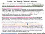 lowest cost energy from vast biomass