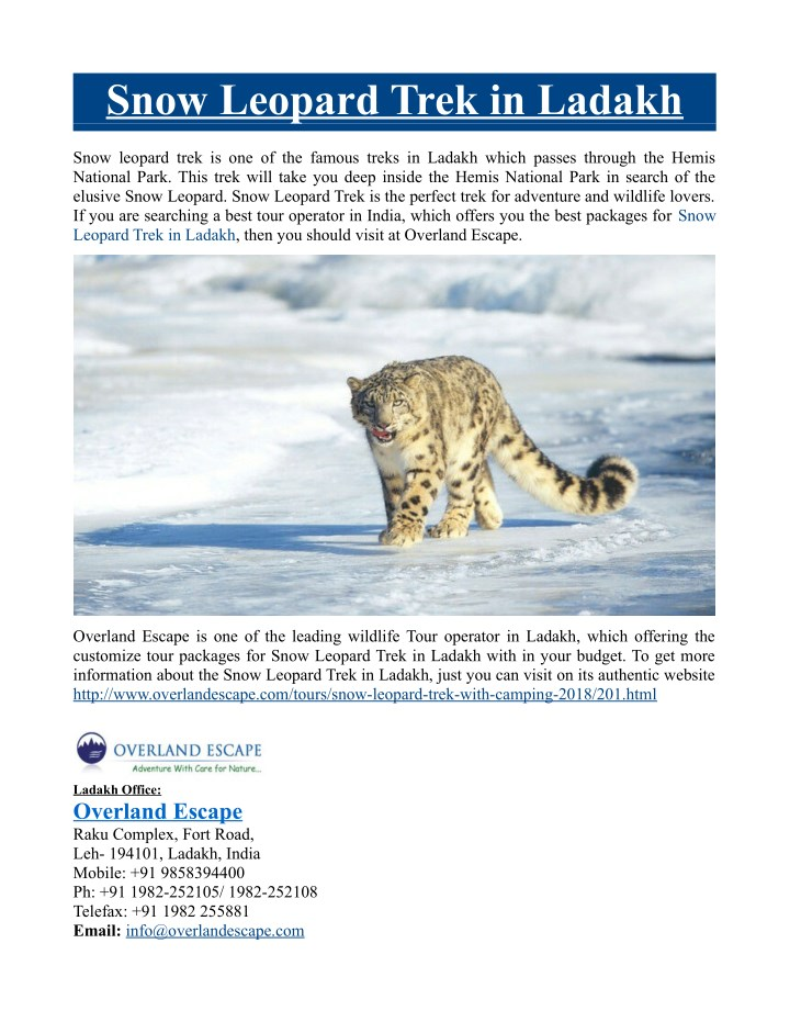 snow leopard trek in ladakh n.