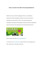 how to master the skills of learning mandarin