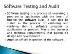 software testing and audit