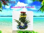 beautiful colorful