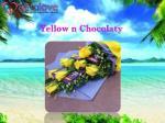 yellow n chocolaty