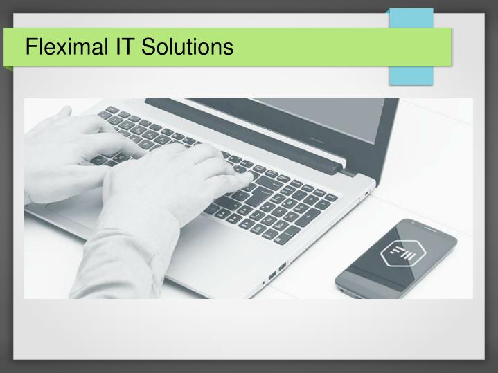 fleximal it solutions n.