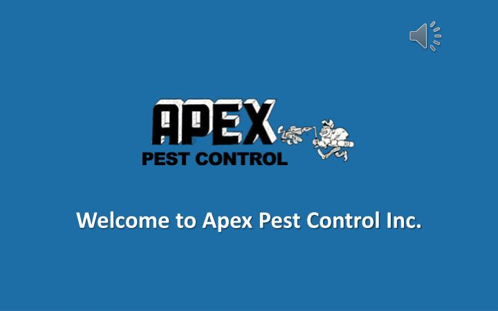 welcome to apex pest control inc n.