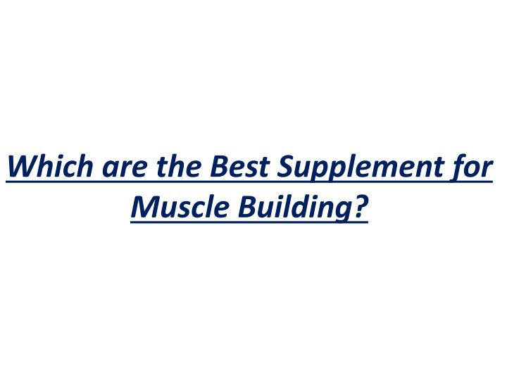 which are the best supplement for muscle building n.
