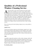 qualities of a professional window cleaning