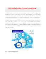 sap basis training courses in hyderabad sap basis