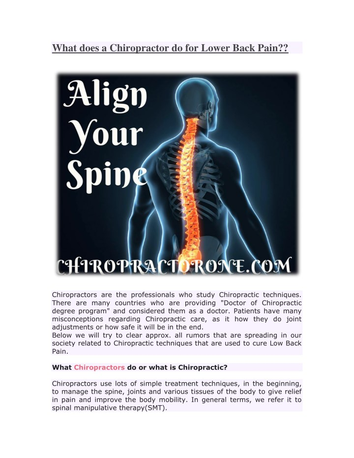 what does a chiropractor do for lower back pain n.