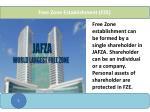 free zone establishment fze
