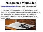 mohammad wajihullah 2