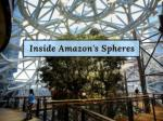 inside amazon s spheres