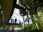 people tour the new amazon spheres reuters