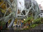 the new amazon spheres are seen from the lower