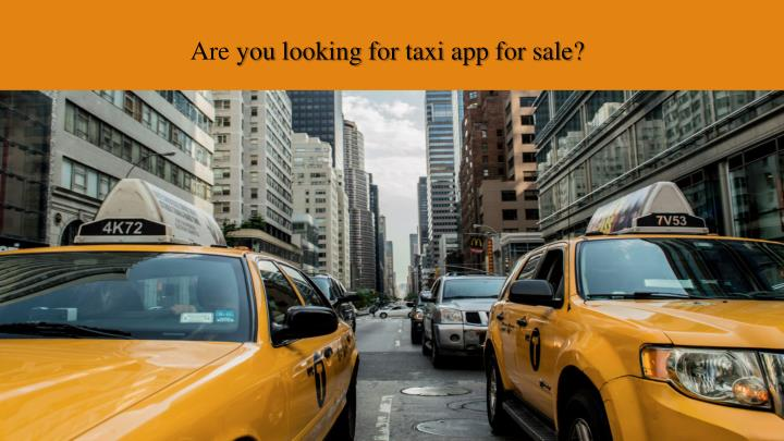 are you looking for taxi app for sale n.