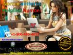 norton antivirus helpline number