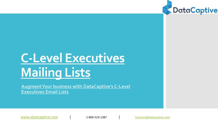 c level executives mailing lists n.
