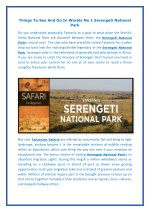 things to see and do in worlds no 1 serengeti