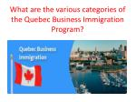 what are the various categories of the quebec business immigration program
