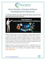 basic benefits of custom software development