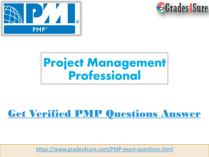 project management professional n.