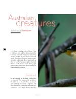 australian creatures creat