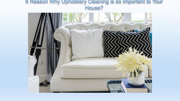 6 reason why upholstery cleaning is so important to your house n.