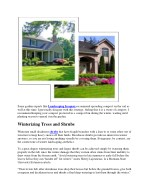some garden experts like landscaping iroquois