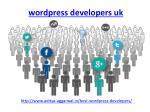 wordpress developers uk 1