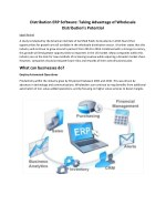 distribution erp software taking advantage