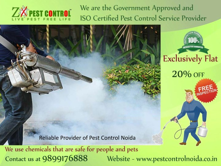 reliable provider of pest control noida n.