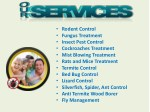 rodent control fungus treatment insect pest