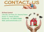 zx pest control 118 120 1st floor ch hansraj