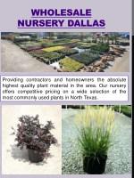 wholesale nursery dallas