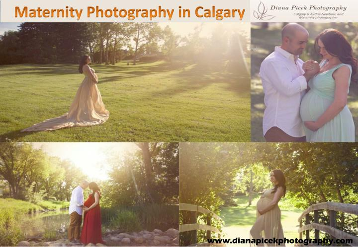maternity photography in calgary n.