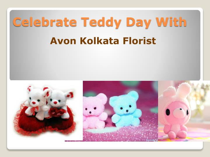 celebrate teddy day with n.