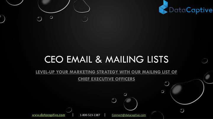 ceo email mailing lists n.