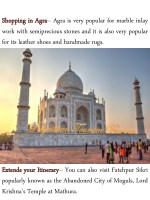 shopping shopping in in agra work with