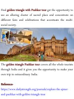 find golden golden triangle see an alluring
