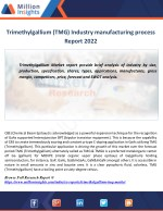 trimethylgallium tmg industry manufacturing