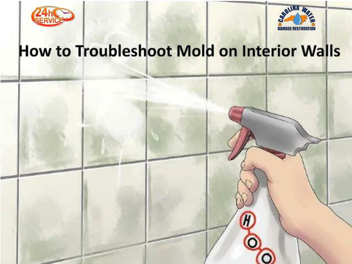 how to troubleshoot mold on interior walls n.